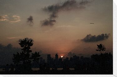 Mumbai Sunset by redscorpion