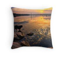 Sunset With Etta Throw Pillow