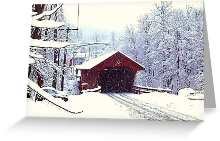WINTER IN UPSTATE NEW YORK by JoAnnHayden
