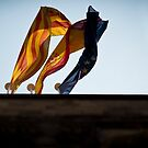 Conflict Flags by MarceloPaz