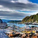 Northern Ireland - Coastal Road View by Greg Roberts