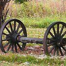 Wagon Wheels by MaeBelle