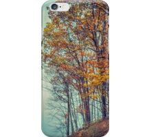 Above the Clouds in Appalachia iPhone Case/Skin