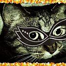 Cat Woman by Dmarie Becker