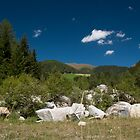 Desolated house on mountain pasture by Rob Schoon