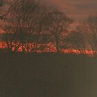 Fire in the skies by geeknowles16