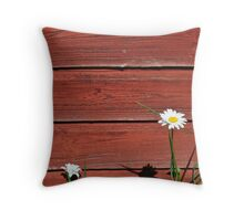 Typical Swedish Summer Throw Pillow