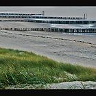 BeachView by Els Steutel