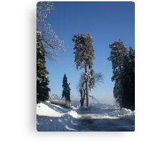 Snow In December Canvas Print