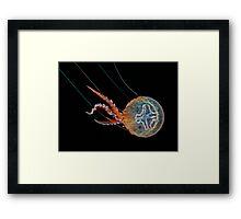 Mauve Stinger Framed Print