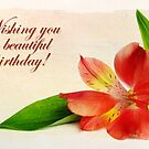 Wonderful Birthday / Peruvian Lily (Card) by Tracy Friesen
