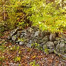 Stone Fence by Gary L   Suddath