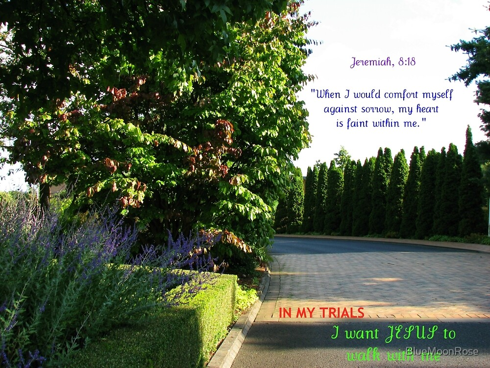 I Want Jesus To Walk With Me by BlueMoonRose