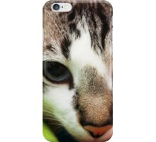Cat #1 iPhone Case/Skin