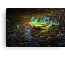 Photo Number 360 Canvas Print