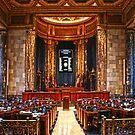 Louisiana State Senate Floor by ☼Laughing Bones☾