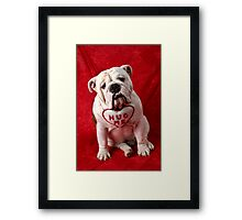 English Bulldog puppy hug me Framed Print