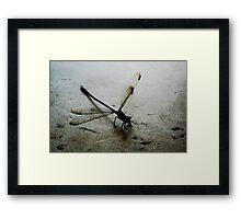 Here is a dragon that flys!! Framed Print