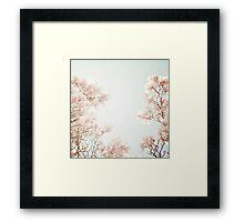 magnolia Impression encadrée