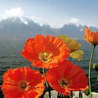 Lake expressions - Switzerland by kirkgunn