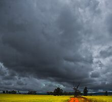 The Storm that Shakes the Barley by Bilks
