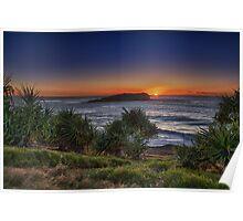 fingal headland sunrise Poster