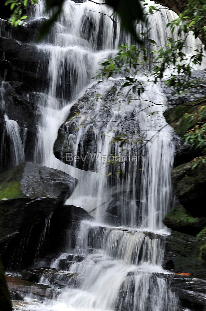 Midway Somersby Falls NSW Australia by Bev Woodman