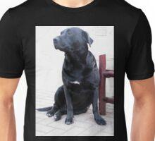 Best companion Unisex T-Shirt