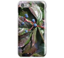 rust colored leaves iPhone Case/Skin
