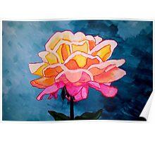 Sunrise Rose Poster