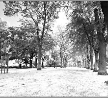 People's park Grimsby by Keith Stocks