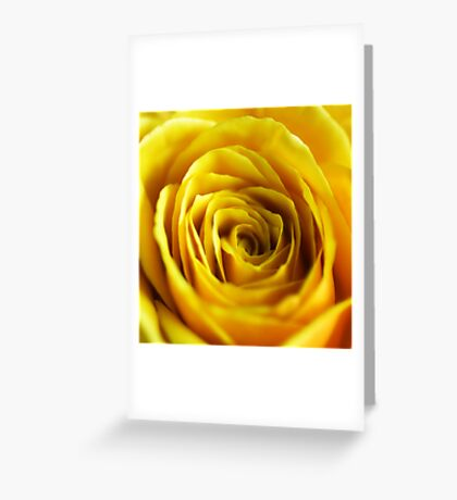 Colour Of Life XIV [Print & iPad Case] Greeting Card
