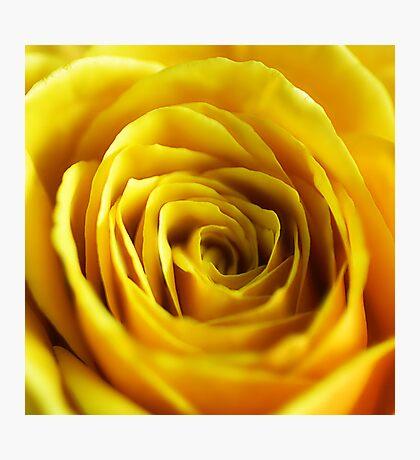 Colour Of Life XIV [Print & iPad Case] Photographic Print