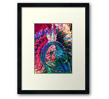 Plains Indian Illusion Framed Print