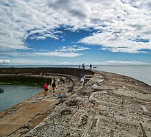 The Cobb Wall At Lyme Regis, Dorset Uk by lynn carter