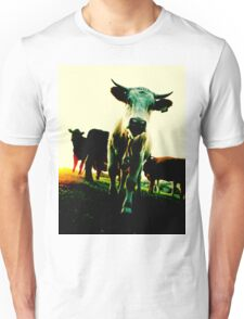 Here's Looking at You kid! Unisex T-Shirt