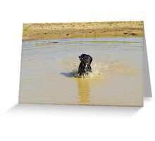 The muddy pond Greeting Card