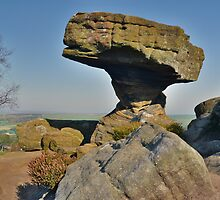 Yorkshire: Brimham Rocks, The Druid's Writing Slab by Rob Parsons