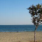 October beach by Maria1606