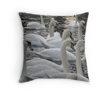 Swans on the river Exe. Throw Pillow