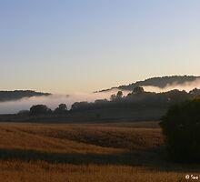Foggy Farm Lands by BarbWireNRoses