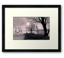 In the early morning rain Framed Print