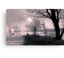 In the early morning rain Canvas Print