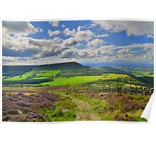Yorkshire: The Path Along Cringle Moor Poster