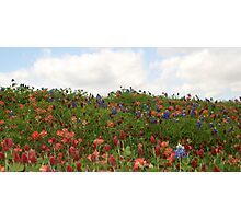 Hilltop Flowers And Clouds Photographic Print