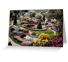 I never promised you a rose garden...  Greeting Card