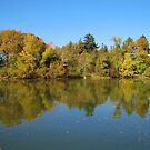 Autumn Pond Reflections by lorilee