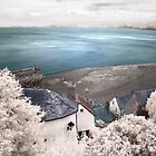 Clovelly in Infrared by Denise McDonald