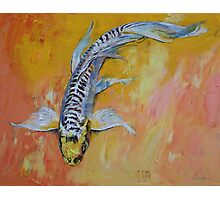 Yellow Dragon Koi Photographic Print
