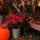 Autumn Welcome by Joanne  Bradley